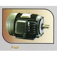 Foot Motor