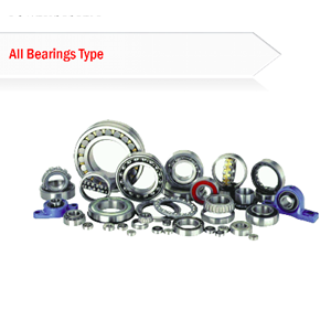 All Bearings Type