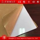 Acrylic sheet Bogor susu 081325868706 2
