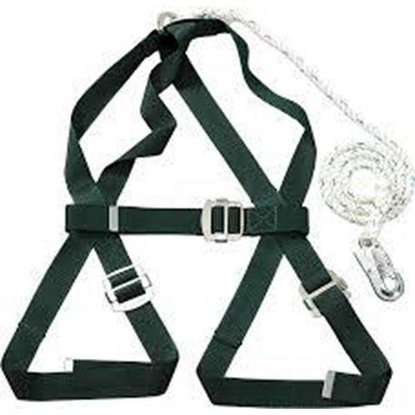 Body Harness NP787
