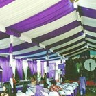 The Ceiling Of The Tent Party 2