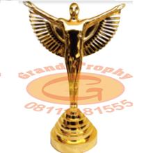 Trophy Panasonic Aword