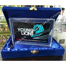 Plakat acrylic young lions