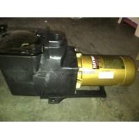 Super Pump 1