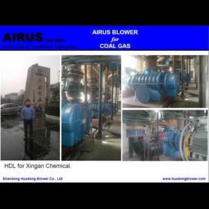 Dari Airus High Capacity Roots Blower (HDR Series) 1