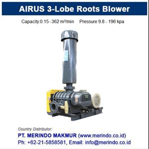 Dari Airus Three Lobes Roots Blower (HDLH series) 3