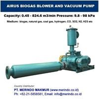 AIRUS Coal Gas Booster Pressure Blower and Coal Gas Vacuum Pump  Murah 5