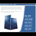 Polycrystalline SOLAR PANEL 50W- 4