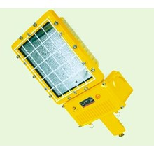LAMPU JALAN TYPE BAT53 EXPLOSION PROOF