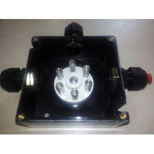 From BXJ8050-20/6 series juction boxes 1