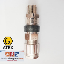 Exd Flameproof Cable Gland Armour SWA UNIV Brass N