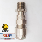 Exd Flameproof Cable Gland HAWKE for SWA Armour Brass Nickel Plated Model : 501/453/RAC/O/M20 1