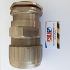 Exd Explosion Flameproof Cable Gland HAWKE for SWA SWB STA ArmourModel : 501/453/RAC/C2/M40 Brass Nickel Plated 4