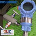 Pressure Transmitter ROSEMOUNT 3051TG3 new with 2way manifold 1