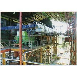 Biomass Fired Combi