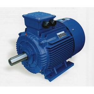 ME Series Three - Phase Asynchronous Motor Cast Iron Housing EFF2