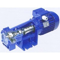 DESMI Direct Coupled Pumps 1