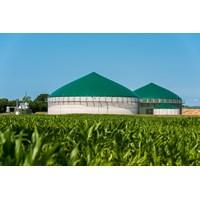 Biogas Palm Oil