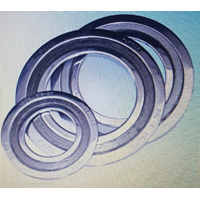 Spiral Wound Gaskets with outer dan inner 1