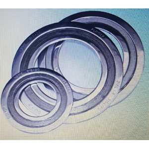 Spiral Wound Gaskets with outer dan inner