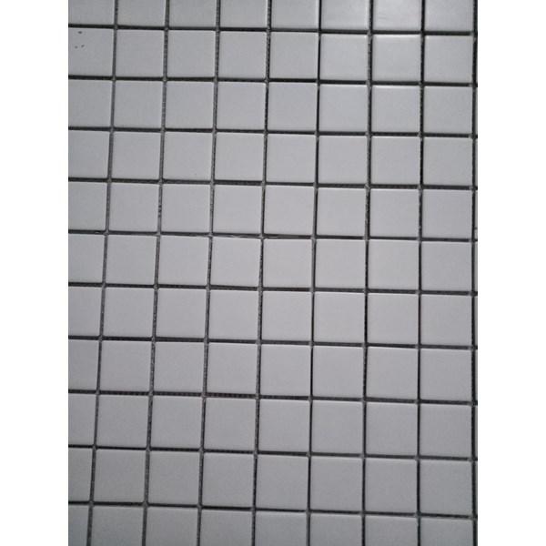 Mosaic Mass Kuda Laut Tipe Tsq 1010