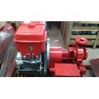 Diesel Hydrant Fire Pump 7