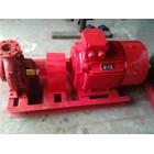 Elektric Hydrant Fire Pump 1