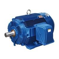 Teco Electric Motor