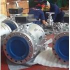 Carbon Steel Gate Valves A216 WCB 2