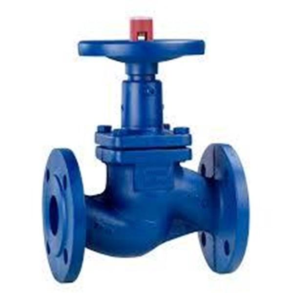 Globe valve boa
