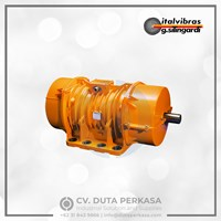 Italvibras Vibrator Motor Type MVSI Series Duta Perkasa 1