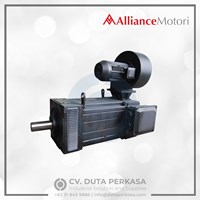 Alliance Motori Inverter Duty Motor Type A-YJP Series Duta Perkasa