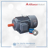 Alliance Motori Inverter Duty Motor Type A-YVF Series Duta Perkasa