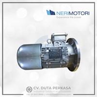 Nerimotori Dual Speed Brake Motor Crane Motor Duta Perkasa