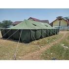 Tenda Pleton 6x14 3