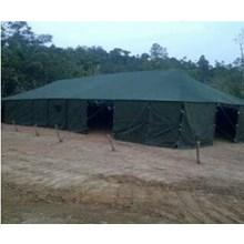 Tenda Pleton 3