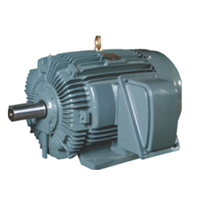 Teco Induction Motor