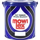 Cat Mowilex Medan 1