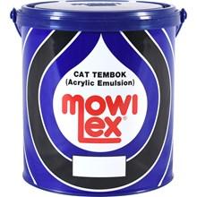 Mowilex Paint