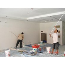 Wall Paint Services