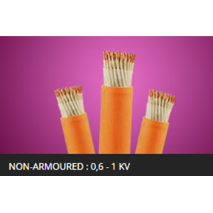 Kabel NON ARMOURED 06 1Kv