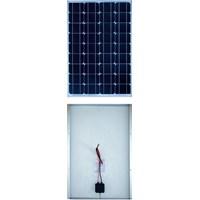 Solar Panel Skytech Solar 1