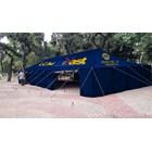 Tenda Pleton-TP002 1