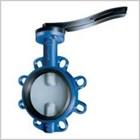 butterfly valve wafer 1