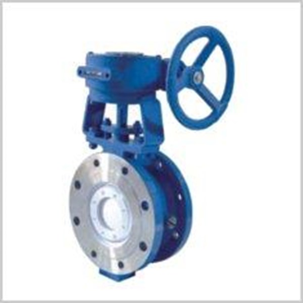 metal to metal butterfly valve2