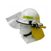 Protector Bushfile Helmet Type III 1