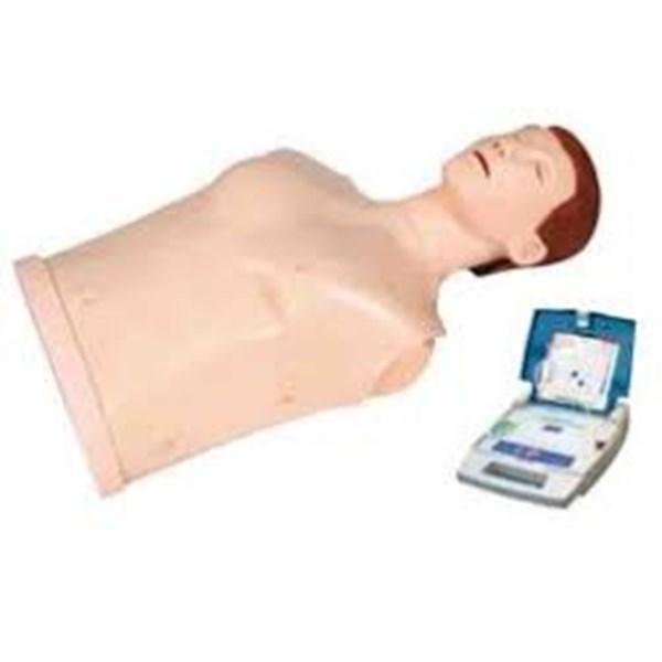 MANEKIN CPR
