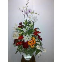 Distributor Bunga Meja 3