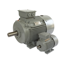 FOOT MOUNTED 3 PHASE SQUIRREL CAGE INDUCTION MOTORS