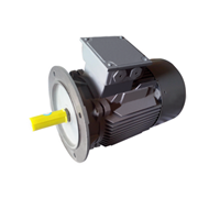 FLANGE MOUNTED 3 PHASE SQUIRREL CAGE INDUCTION MOTORS 1